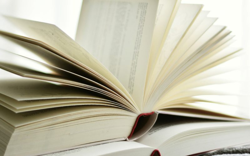 How Does Studying Literature Affect Us?